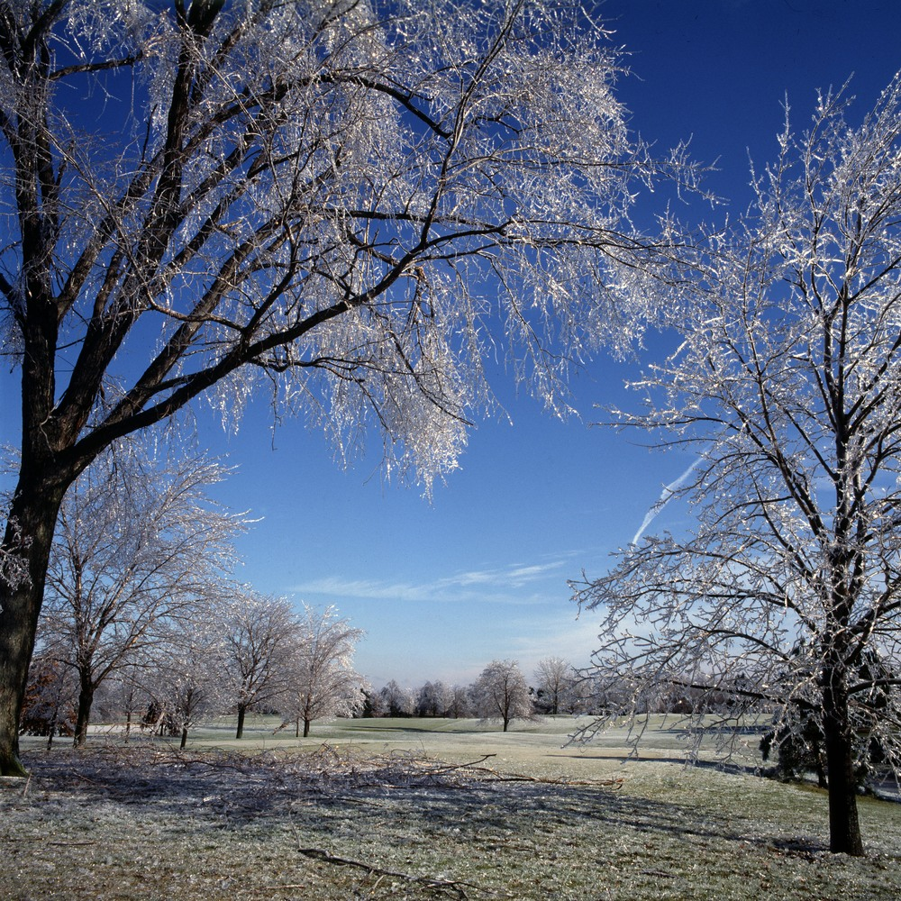 Icestorm.jpg