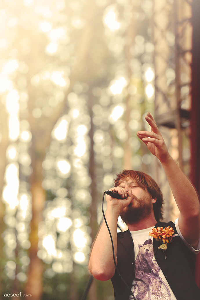 EF15 Marco Benevento Forest Call Dusty small.jpg