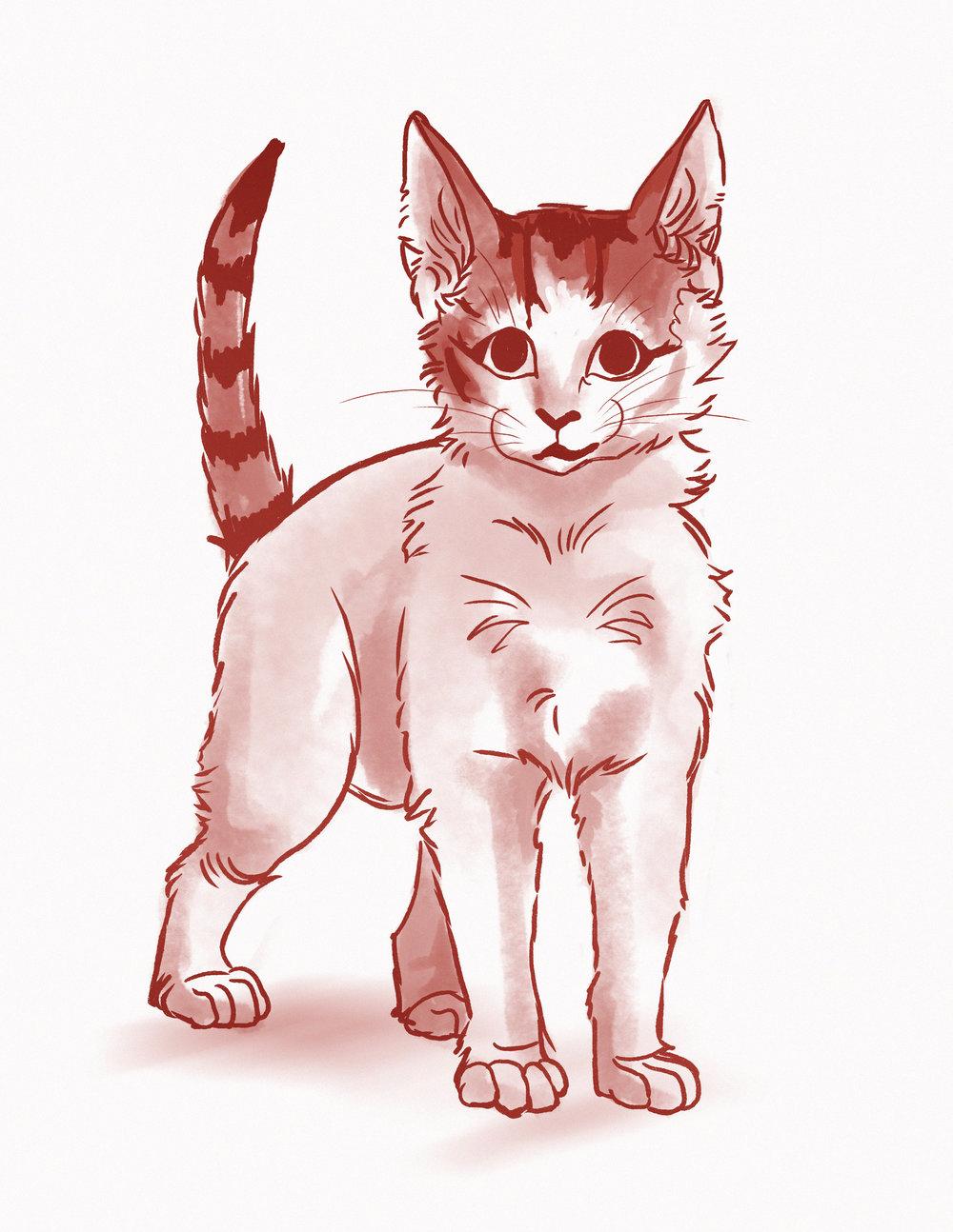 eevee kitty.jpg