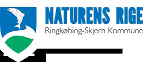 HIF-Ringkøbing-Skjern Kommune.png