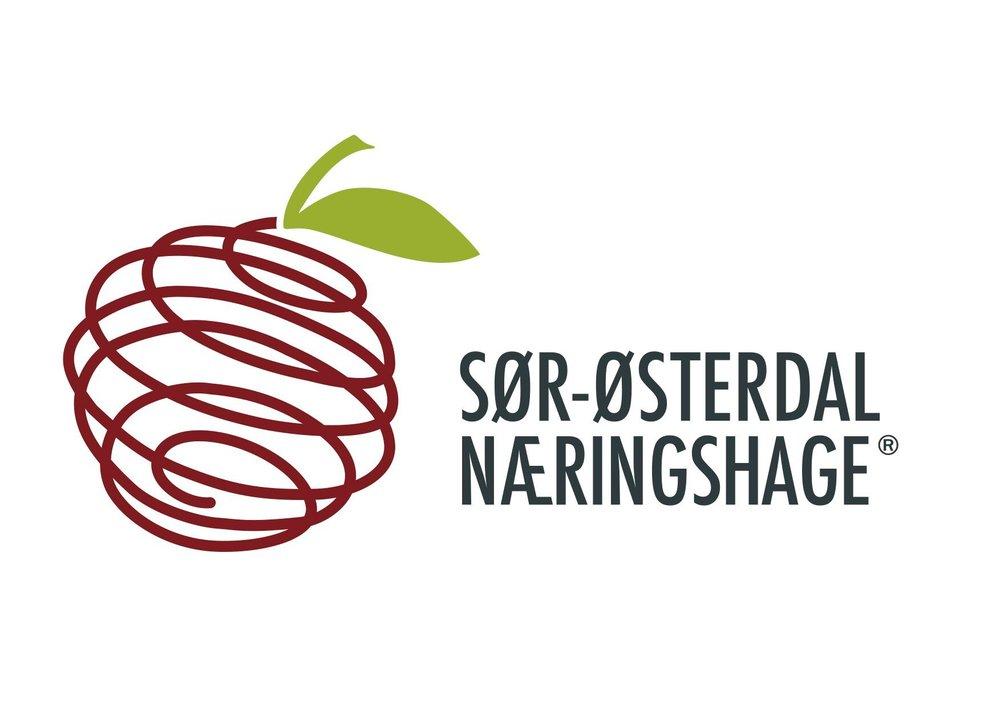 Sør-østerdal Næringshage2.jpg