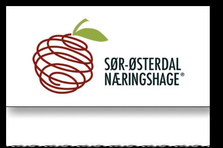 _Sør-Østerdal Næringshage.png