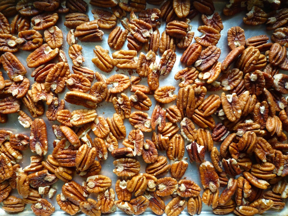 fig. b:  freshly toasted pecans