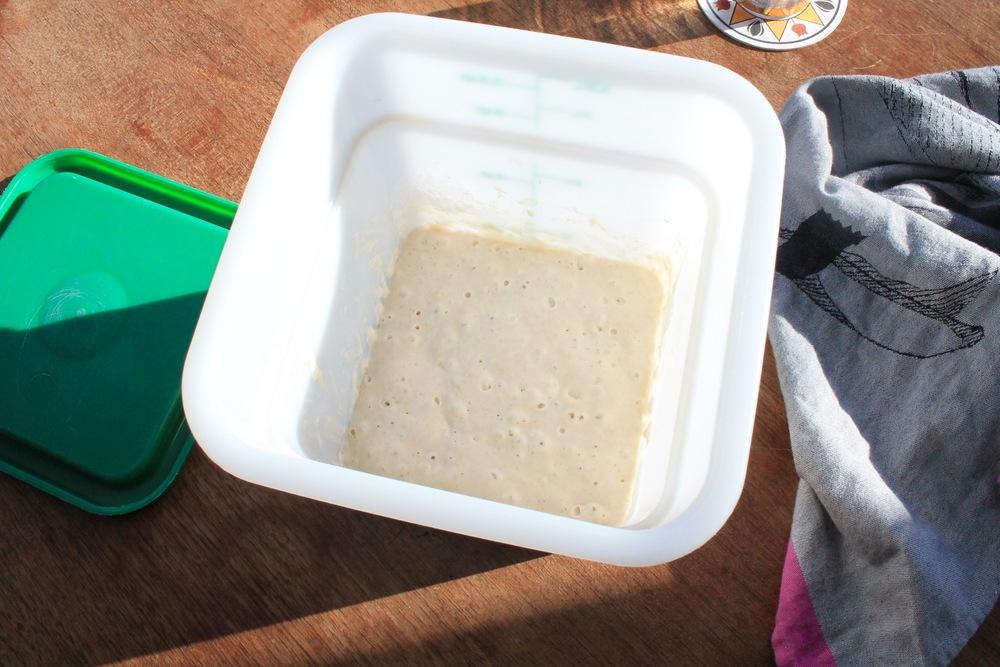 fig. c: sourdough starter, ready for action