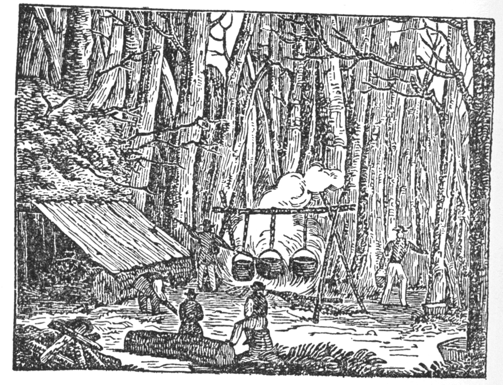 fig. a:  maple sugaring in the northern woods