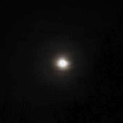 Allan Lewis _ Waning Gibbous MoonPhoto.jpg