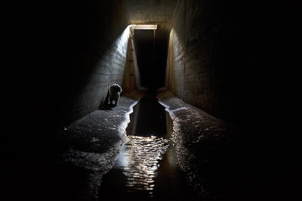 Underground38.jpg