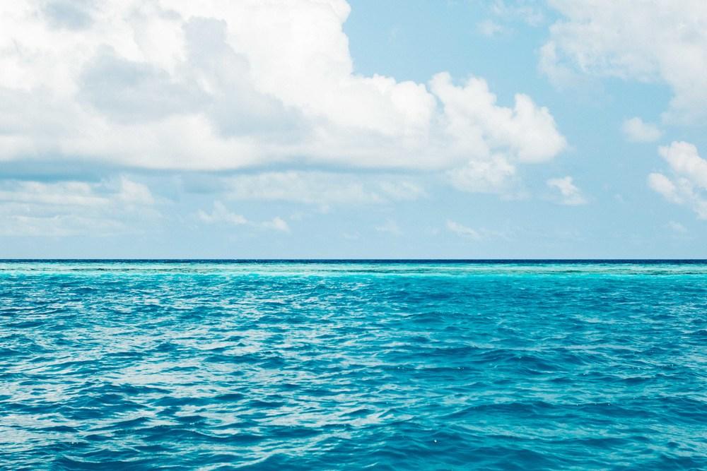 MALDIVES_CORONA_COCONUT COMRADERY_19.jpg