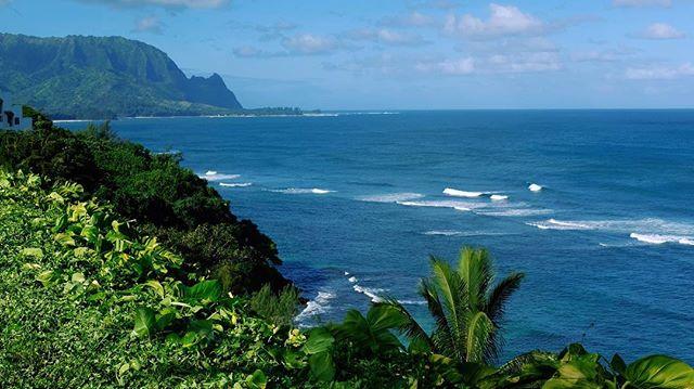 Mahalo Kauai 🙏🏽🌊