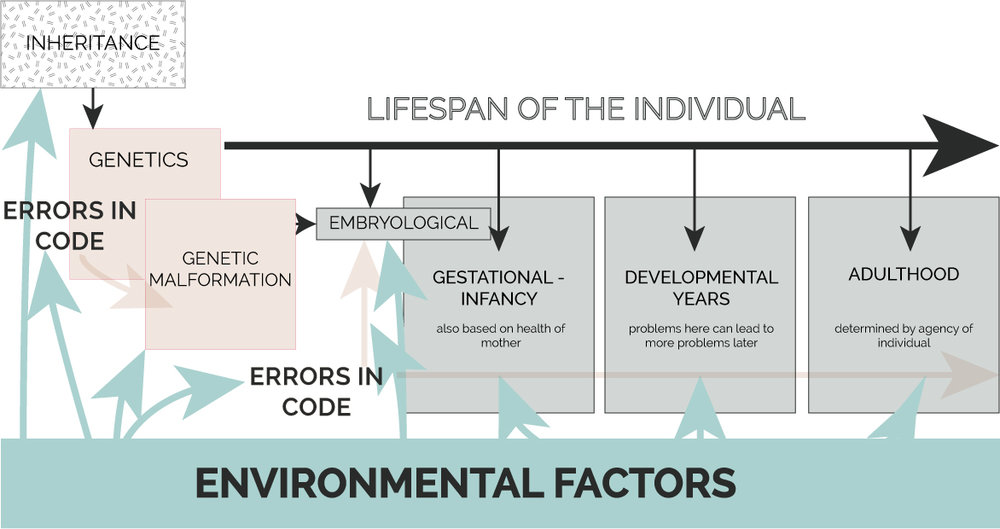 Environmental Effect on Health.  Disease can be seen as matter without form until it comes into contact with favorable conditions. These conditions are often induced by environmental factors, such as pollution, water quality, and sanitation methods.