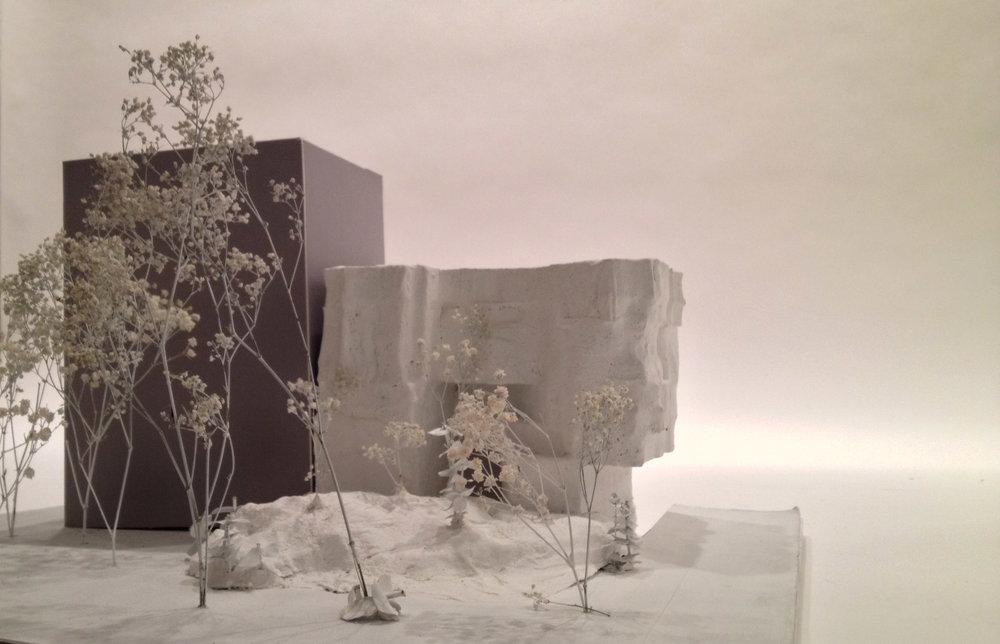 Concept Site Model.
