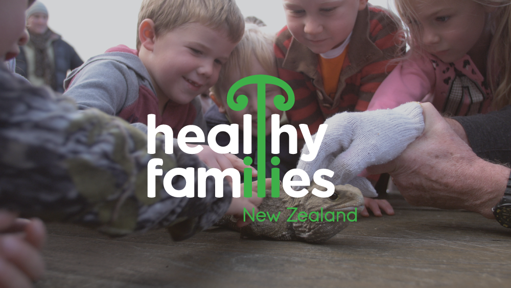 View Healthy Families NZ »