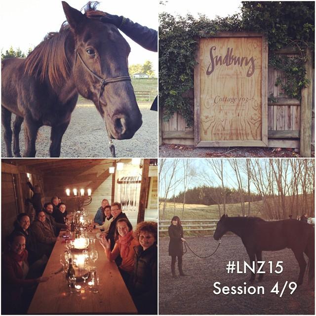 LNZ15-Session4.jpg