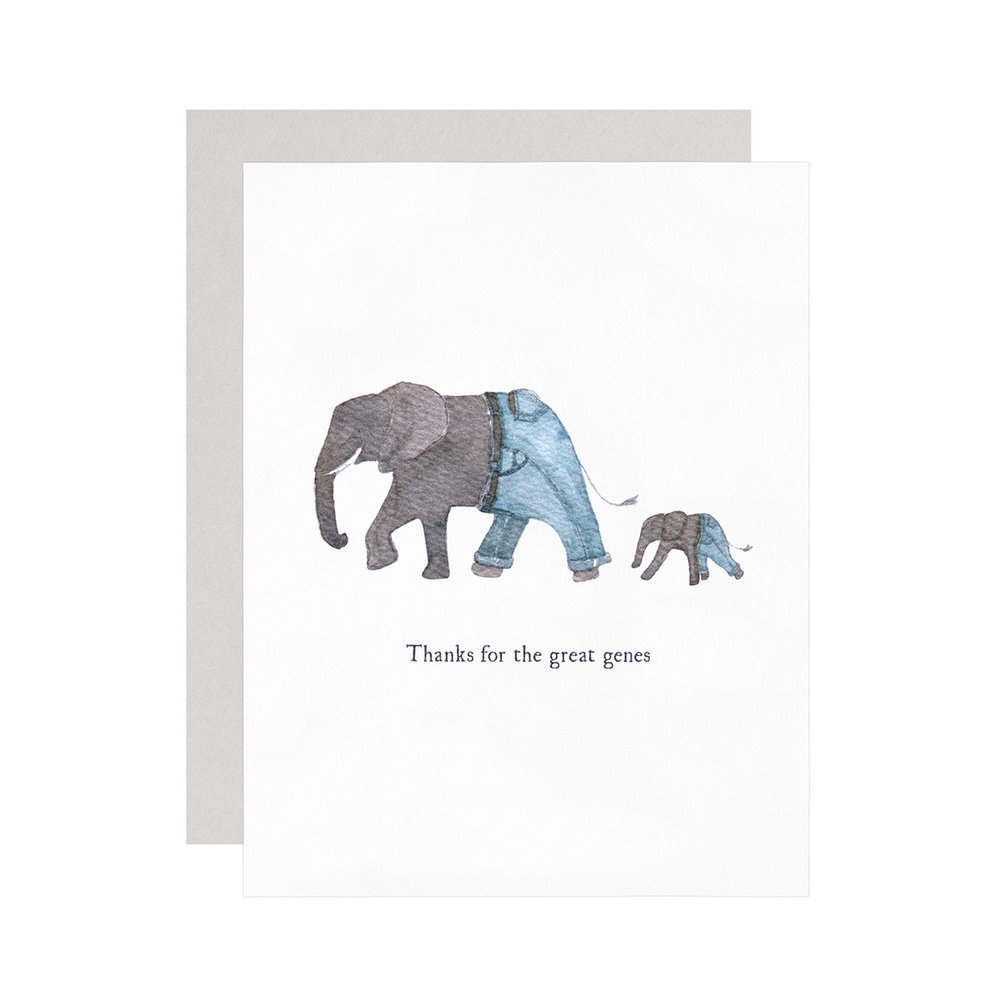 Novella-Group-16-Elephant-Dad.jpg