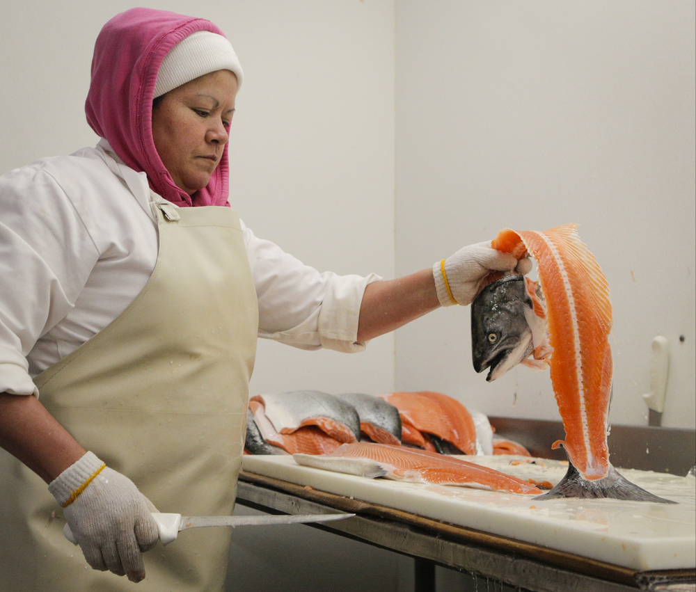 Maria Victoria Flores de Garcia fillets wild king salmon at the North Coast Fisheries processing plant in Santa Rosa, California, on Friday, July 17, 2015.