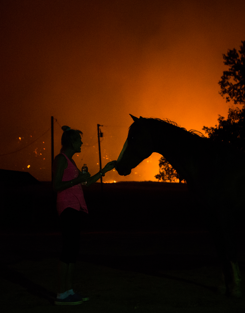 Mary Klemish comforts her horse as the Rock Fire blazes behind her home on Morgan Valley Road just out of Lower Lake, Calif., on Wednesday, July 29, 2015. Klemish was forced to evacuate.