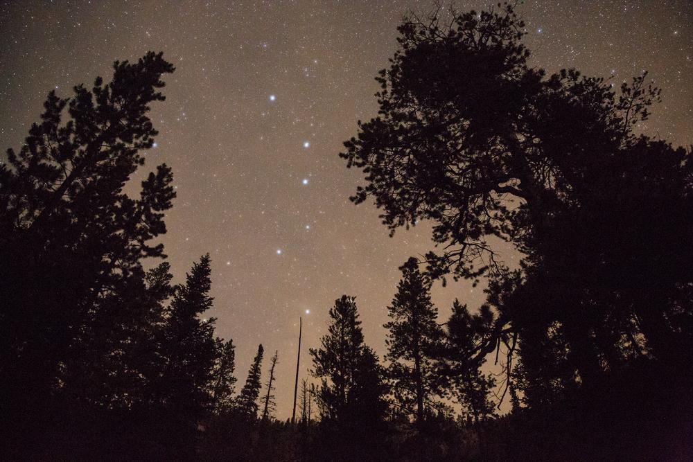 Night sky, Rocky Mountain National Park.