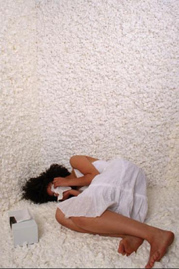 "liesl ""tissues"" 2007"