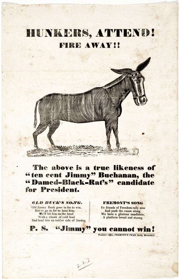 jackson donkey