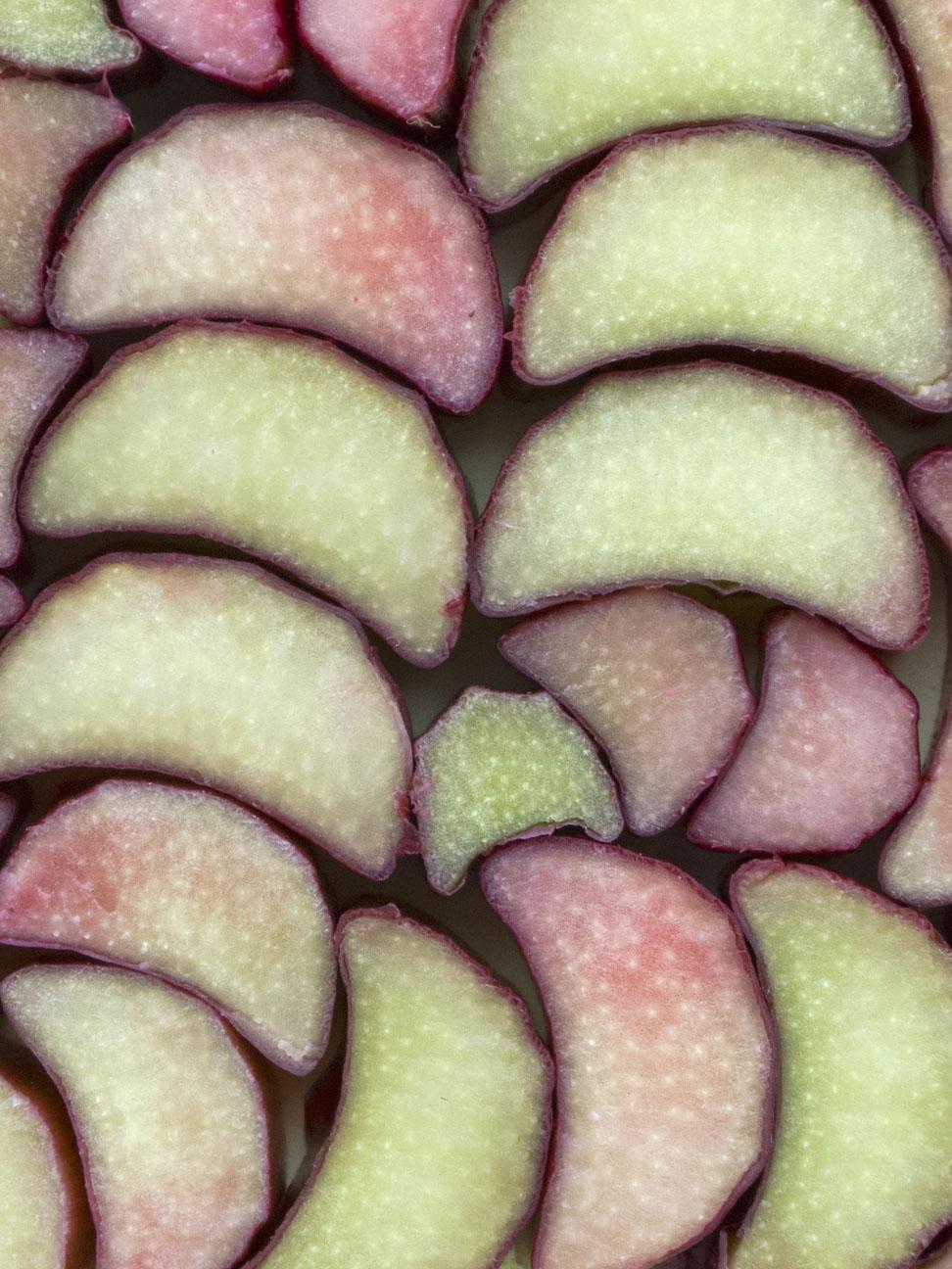 Rhubarb_1300841.jpg