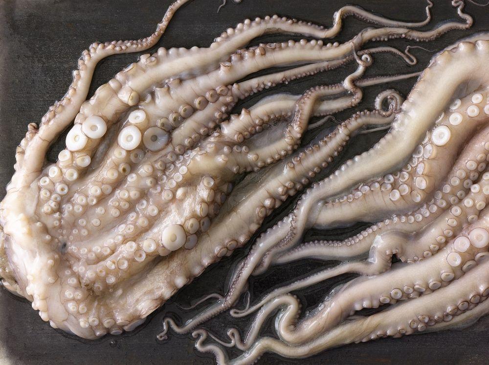 Quality & Responsibility    PREMIUM SEAFOOD    Spanish Octopus