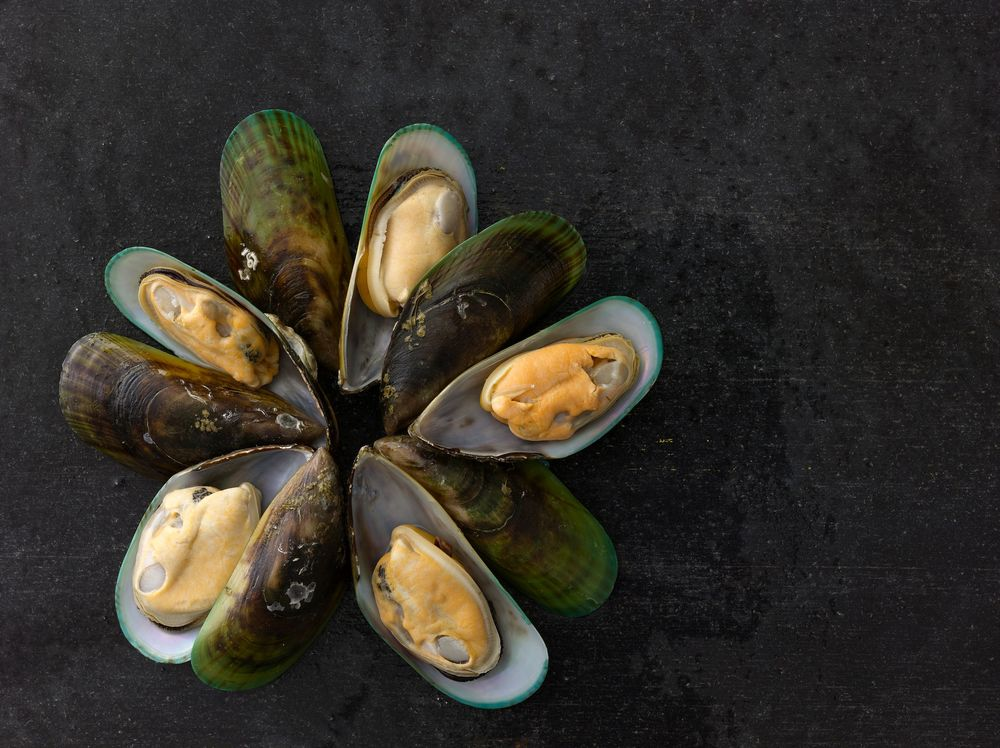 Quality & Responsibility    PREMIUM SEAFOOD    New Zealand Mussels