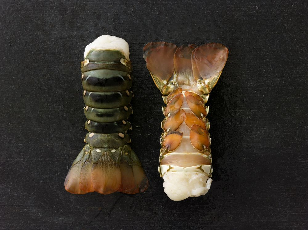 Excellence & Responsibility    PREMIUM SEAFOOD    Lobster Tails
