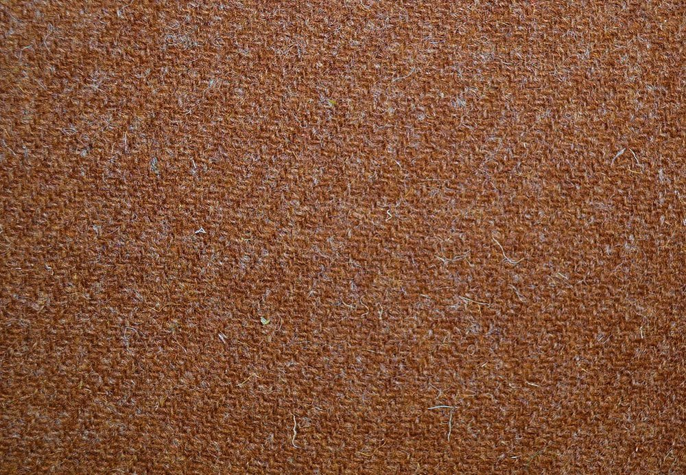autumn brown 330.jpg