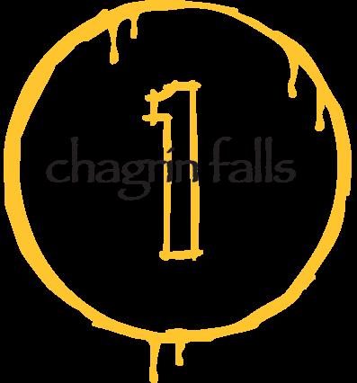 1-bwt-chagrin-falls.png
