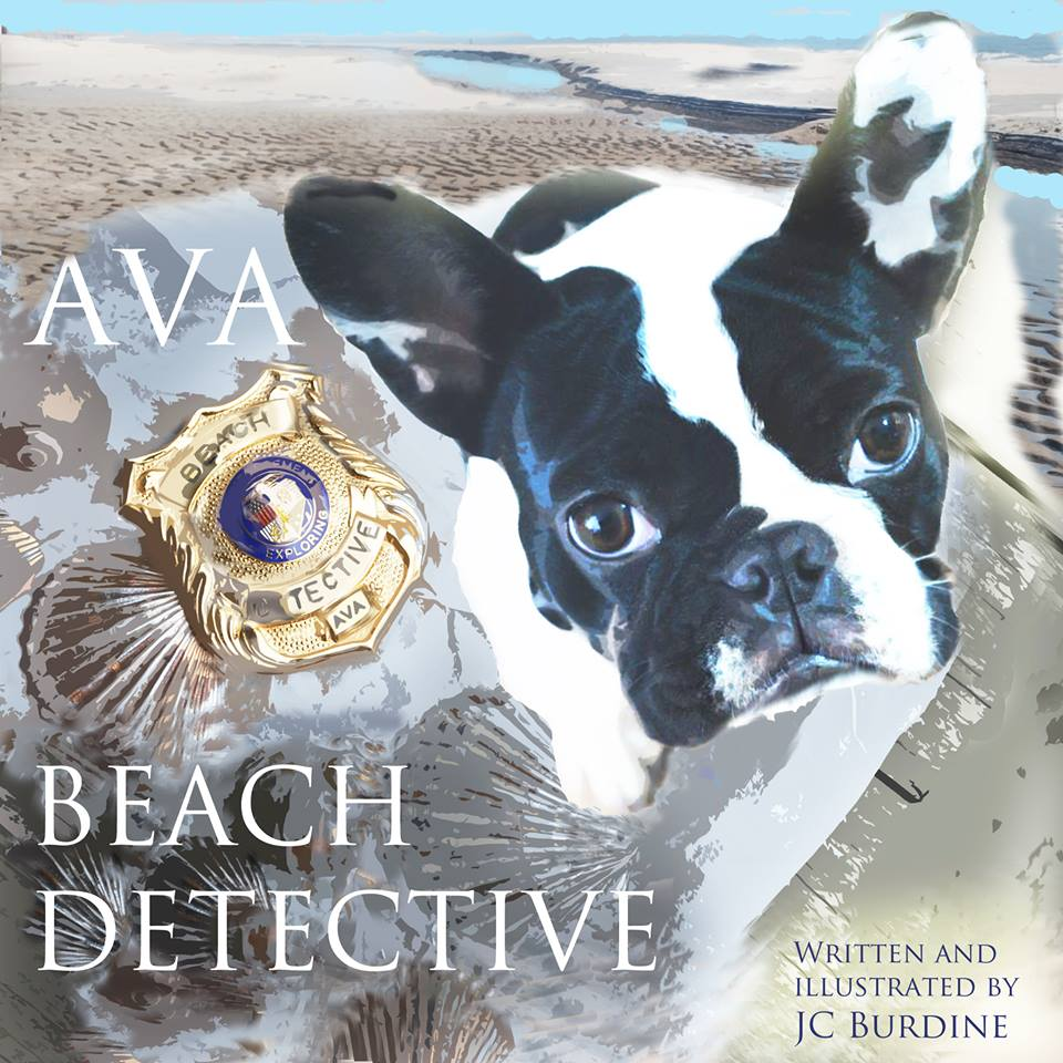 Ava Beach Detective, illustrated and written by JC Burdine, available on amazon.com