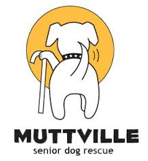 Muttville Senior Dog Rescue