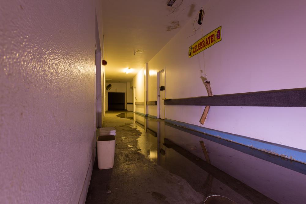 Mold Haus Service Hallway