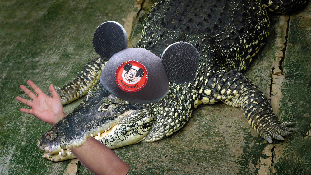 Keep all arms and legs inside the vehicle at all times. Or the Disney Gator will get 'em.