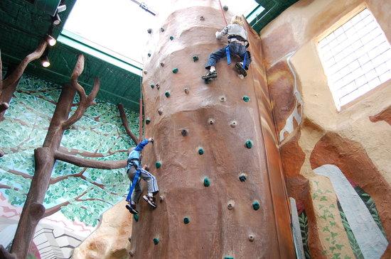 climbing-walls-inside.jpg