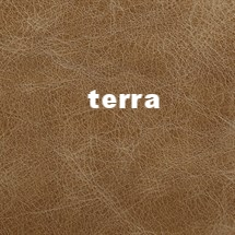 Leather-Distressed-Terra.jpg