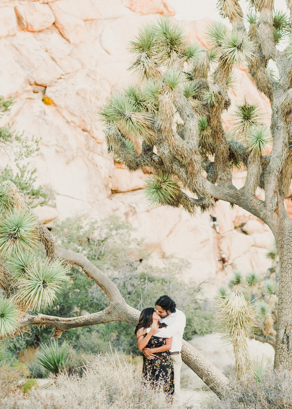 JOSHUA-TREE-HIGHLIGHTS-9.jpg