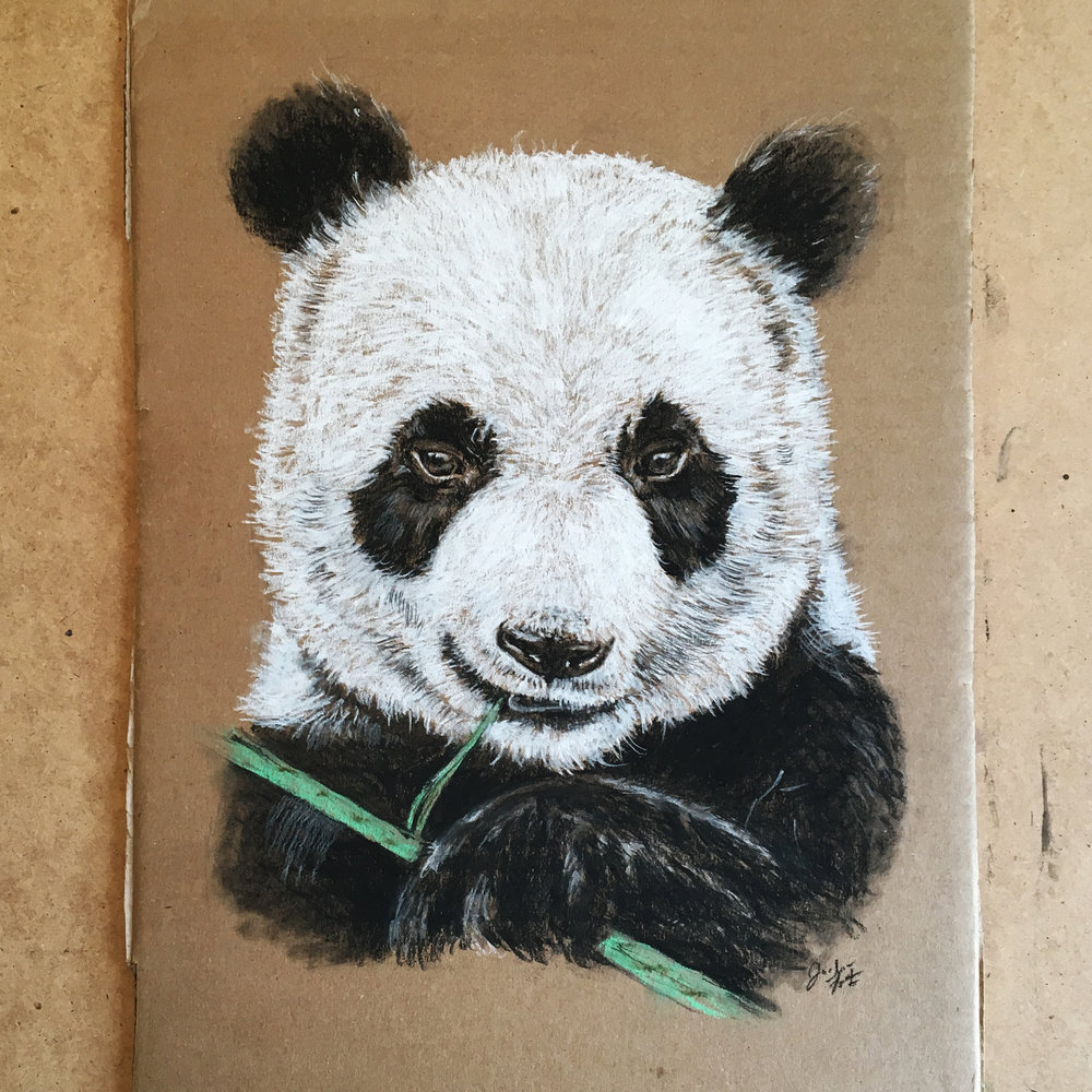 Cardboard Art, Chalk Panda Bear Illustration