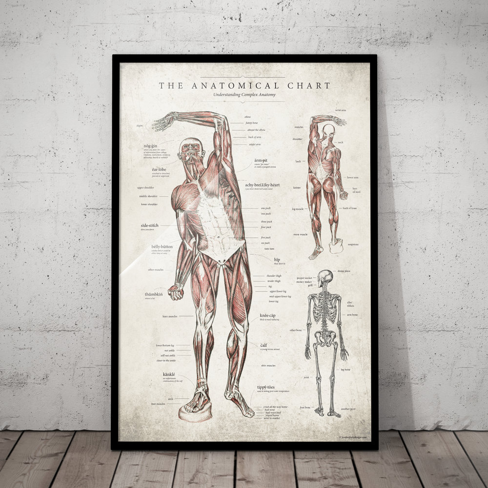 doctor-gift-anatomical-chart-design-by-jordan-fretz.jpg