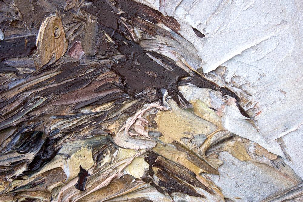 Detail: Kepler Ridge