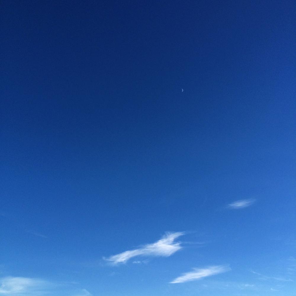 SKY_50.jpg