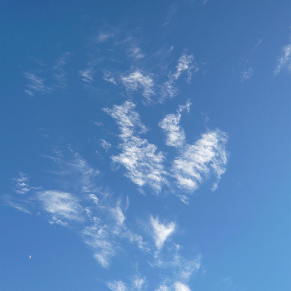 SKY_84.jpg