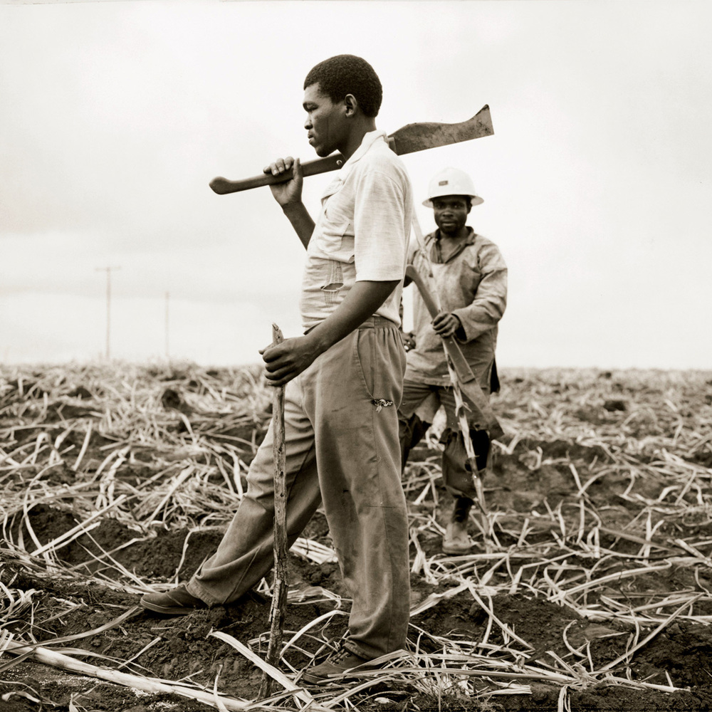 africamachete.jpg