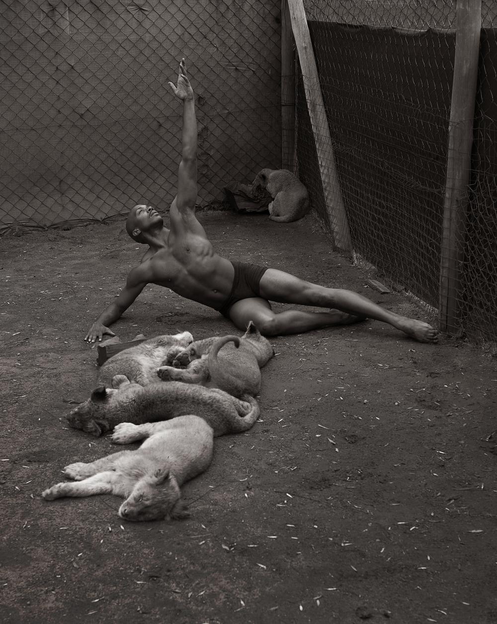 Cubs_post.jpg