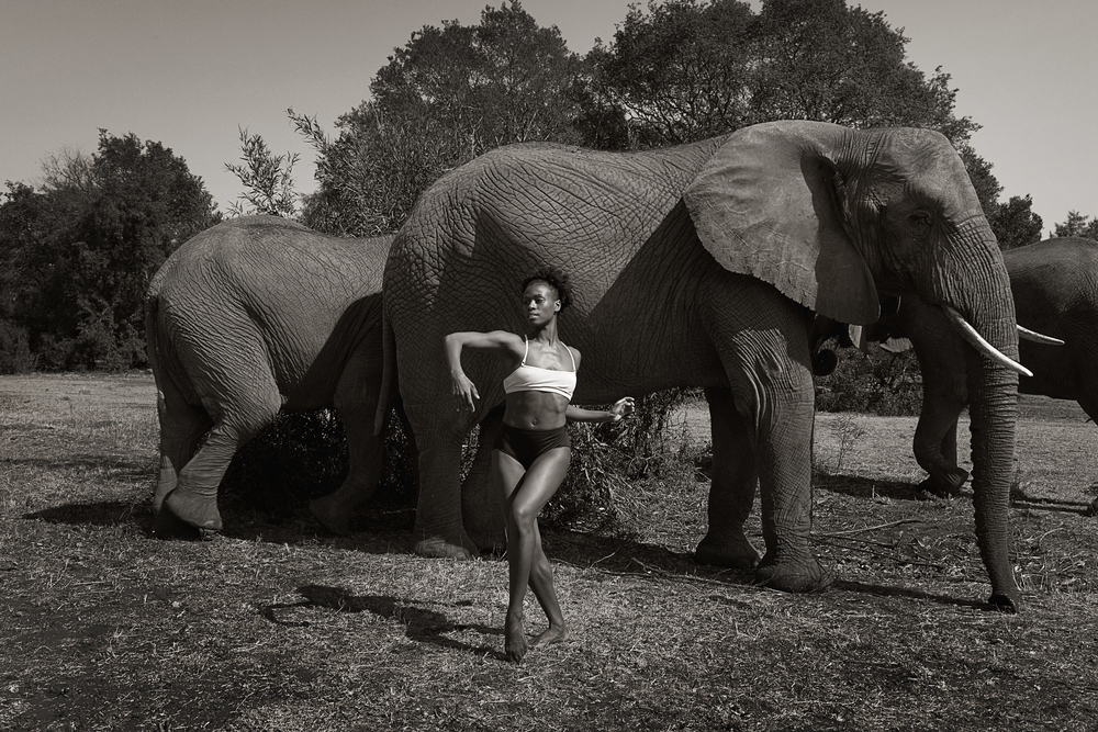Rachel_elephant.jpg