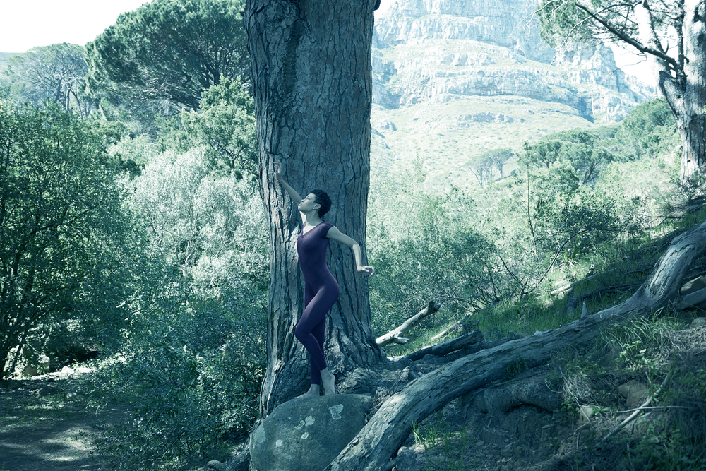 Ghrai trees_color_2.jpg