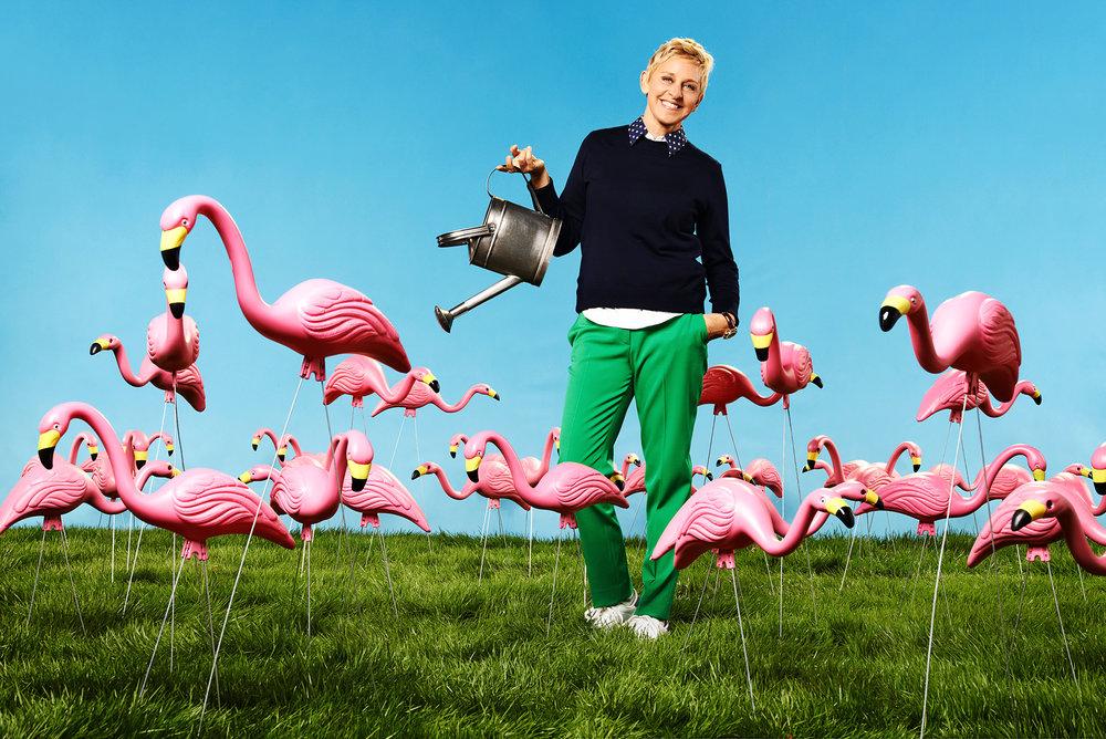 ellen_flamingos+.jpg
