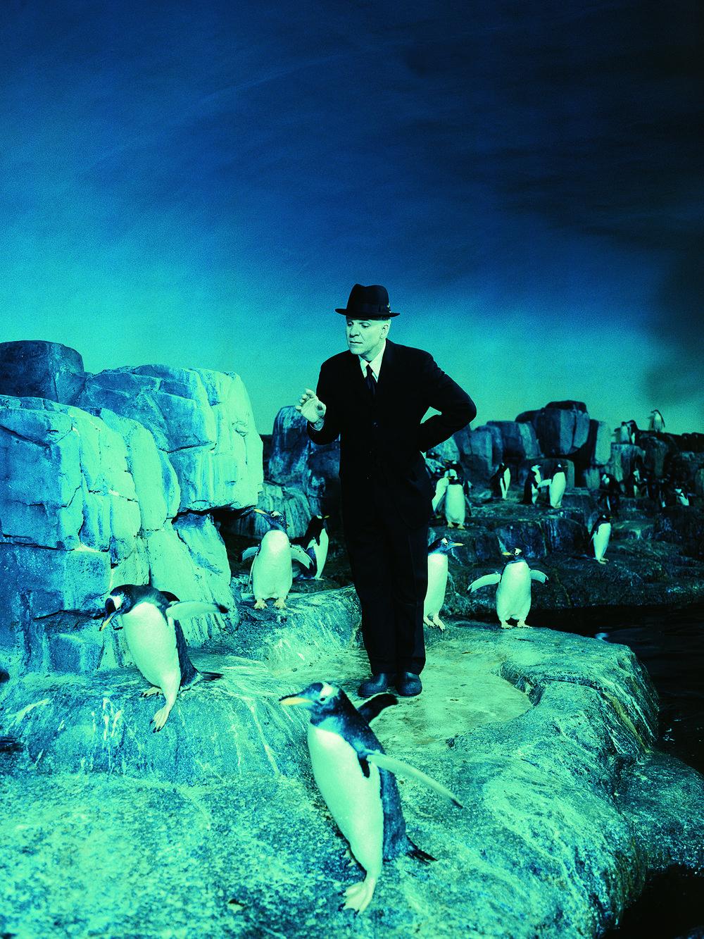 martin_penguins.jpg