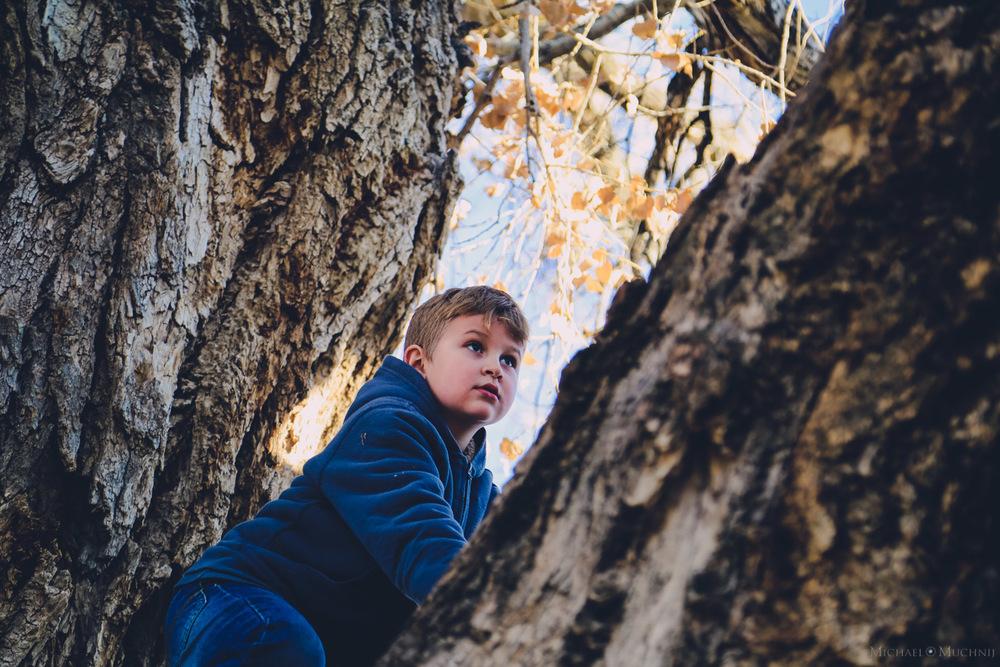 Climbing Trees-6.jpg