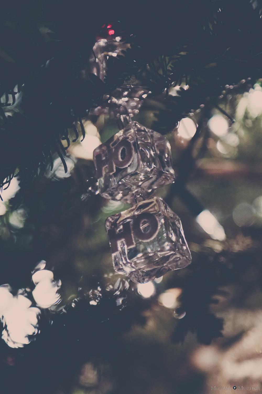 Christmas 2013-10.jpg