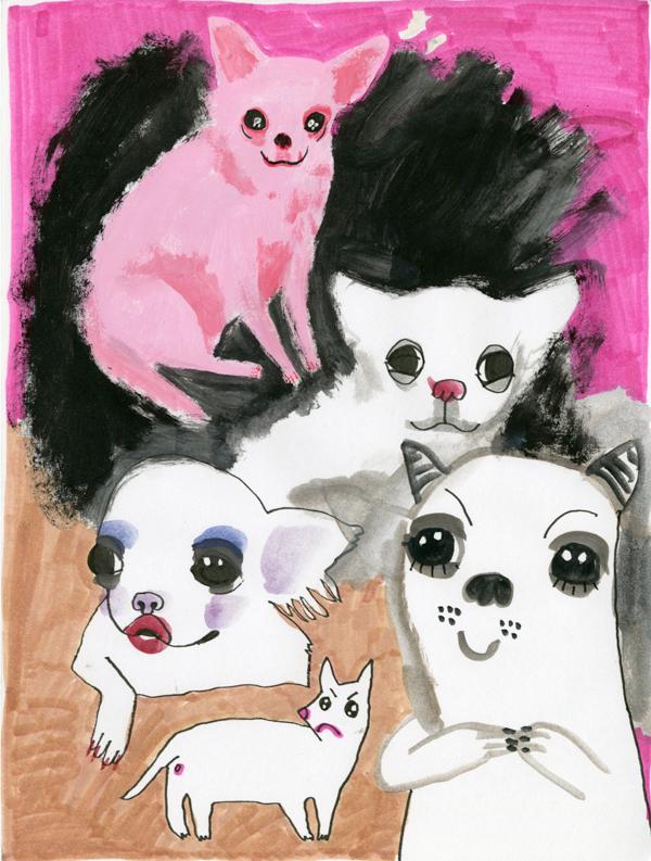 scary-chihuahuas.jpg